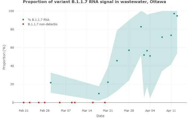 The B117 variant made up 97 per cent of the viral signal in Ottawa's wastewater on April 12 and 94 per cent on April 13.