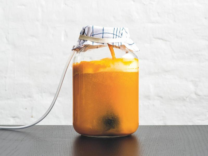 Excerpted from Foundations of Flavor: The Noma Guide to Fermentation by Rene Redzepi and David Zilber (Artisan Books). Copyright © 2018. Photographs by Evan Sung. Illustrations by Paula Troxler.