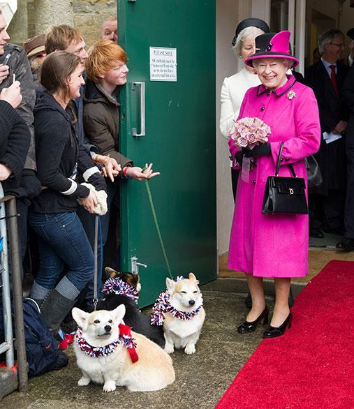 There's no mistaking the one thing that will brighten up Queen Elizabeth II's day - a bunch of corgis dressed to the nines!