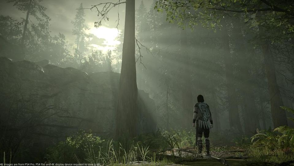 It's hard to beat a game that looks as incredible as 'Shadow of the Colossus' does on the PS4 Pro.