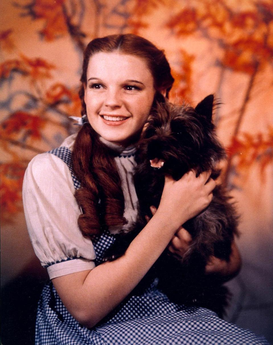 Judy Garland as Dorothy Gale in 'The Wizard Of Oz' (1939) Real age at the time: 16 - Character age: 11