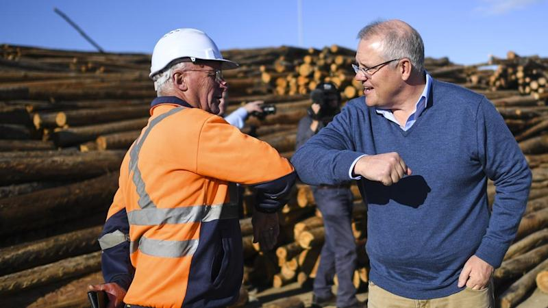 Scott Morrison (R) has offered a $40 million fund to help wood mills diversify their products