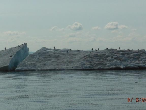 Surprise! Icebergs Spotted in Lake Superior