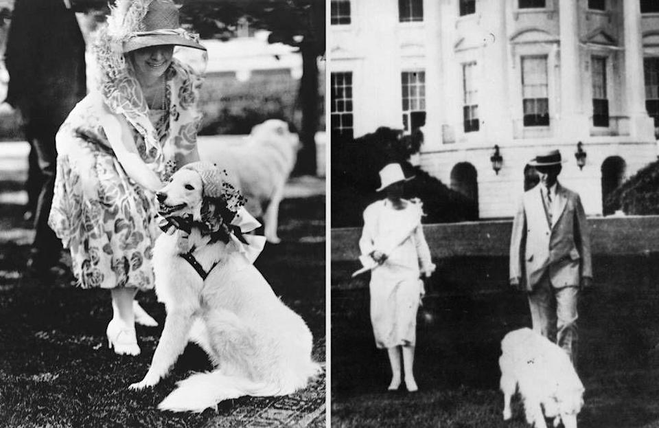 """<p>From left: First Lady Grace Coolidge dresses up her white collie, Rob Roy, in a bonnet for a White House garden party; President Calvin Coolidge with his wife Grace and dog in front of the White House.</p><p><a href=""""http://www.townandcountrymag.com/leisure/arts-and-culture/reviews/g744/presential-dogs/"""" rel=""""nofollow noopener"""" target=""""_blank"""" data-ylk=""""slk:This story originally appeared on TownAndCountryMag.com"""" class=""""link rapid-noclick-resp""""><strong><em>This story originally appeared on TownAndCountryMag.com</em></strong></a></p>"""