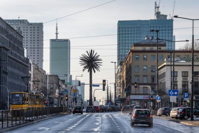 Warsaw's lone palm tree has taken root in the city's landscape and affections