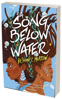 The cover art for the book 'A Song Below Water'.