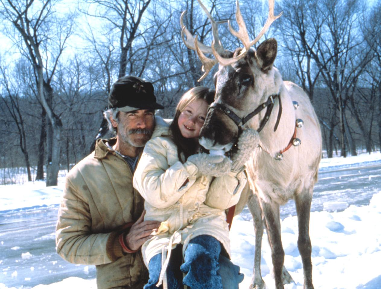 <p>In this 1989 family-friendly flick, a young girl who refuses to lose faith in Santa Claus discovers a wounded reindeer in the woods. Believing him to be Prancer, she works with a kindly vet to bring the animal back to health.</p> <p><strong>When it's available: </strong>Dec. 1</p>