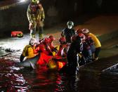 Rescue personnel work to save a small whale stranded in the River Thames in this picture obtained via social media, in London