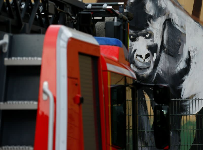 A fire-fighting vehicle is pictured in front of a burned monkey house in the zoo of Krefeld