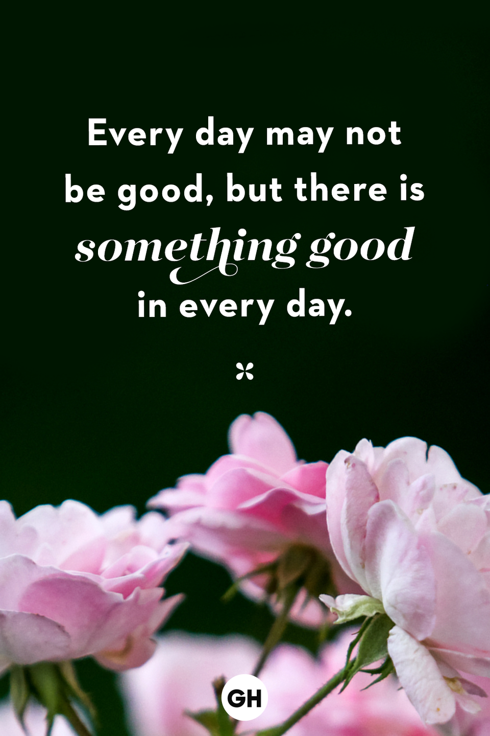 <p>Every day may not be good, but there is something good in every day.</p>