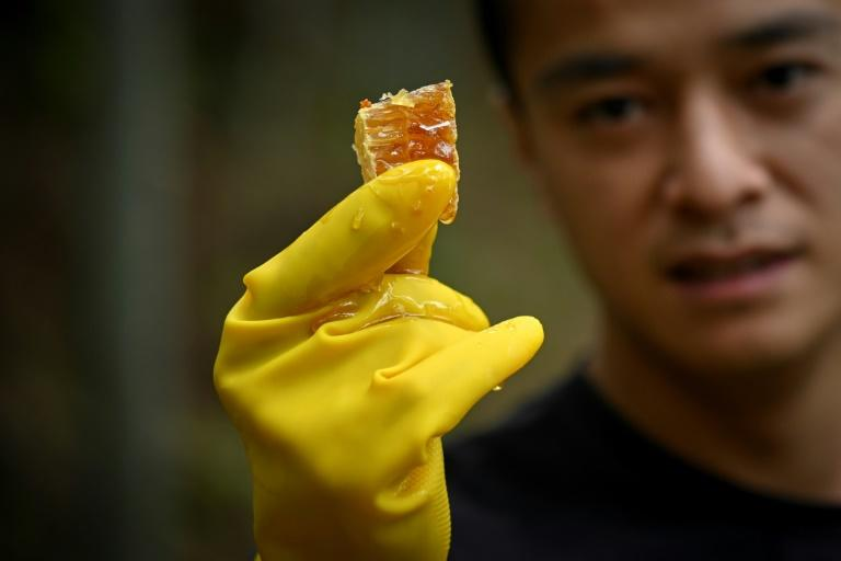 Ma Gongzuo started selling his honey using a technique increasingly popular with Chinese farmers: video clips that show the origins of his product and open a window onto rural life