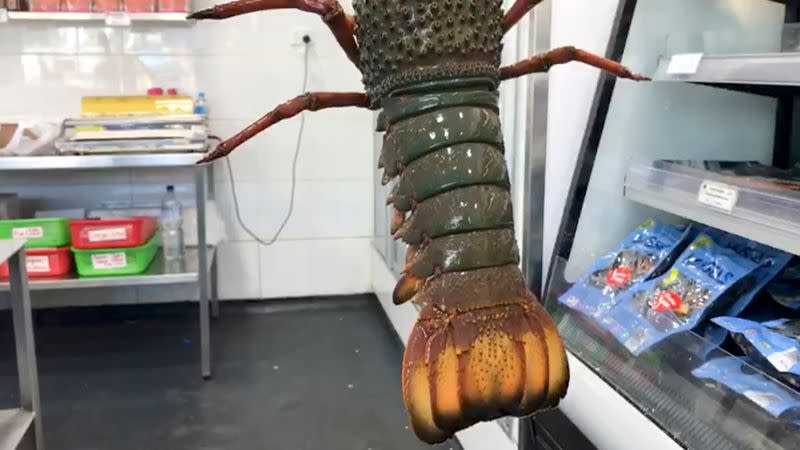 FILE PHOTO: A lobster is seen at a fish market in Sydney