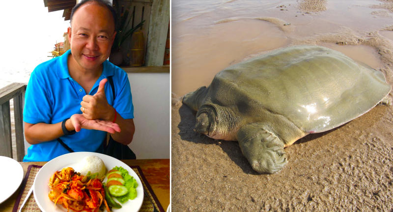 Two photos showing Australian ambassador Pablo Kang on the left, and an endangered softshell turtle on the right.