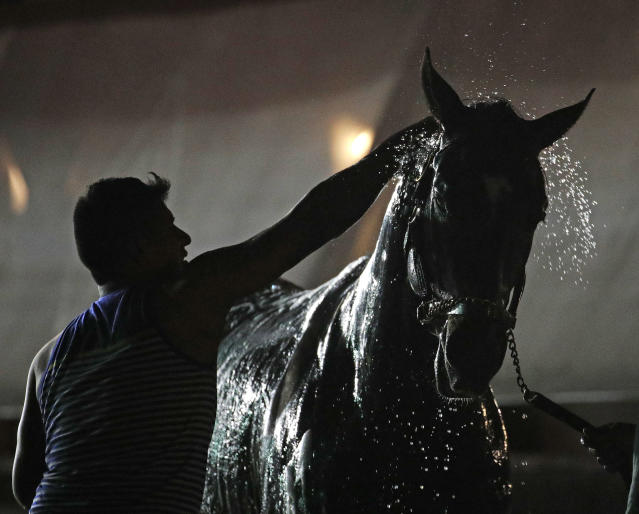 <p>A horse gets a bath after a morning workout at Churchill Downs, Wednesday, May 2, 2018, in Louisville, Ky. (Photo: Charlie Riedel/AP </p>