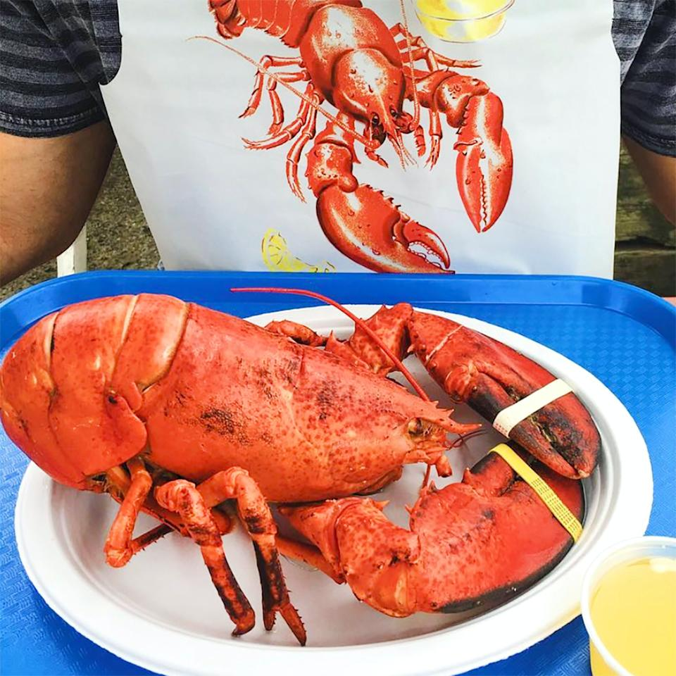 """<p><strong>Beal's Lobster Pier</strong></p><p>goldbelly.com</p><p><strong>$160.00</strong></p><p><a href=""""https://go.redirectingat.com?id=74968X1596630&url=https%3A%2F%2Fwww.goldbelly.com%2Fbeals-lobster-pier%2Flive-15-lb-lobster-4-pack&sref=https%3A%2F%2Fwww.townandcountrymag.com%2Fleisure%2Fdining%2Fg36029837%2Fbest-lobster-delivery-services%2F"""" rel=""""nofollow noopener"""" target=""""_blank"""" data-ylk=""""slk:Shop Now"""" class=""""link rapid-noclick-resp"""">Shop Now</a></p><p>In addition to lobster roll kits, Maine favorite Beal's ships both live and <a href=""""https://go.skimresources.com/?id=74968X1525087&xs=1&url=https%3A%2F%2Fwww.goldbelly.com%2Fbeals-lobster-pier%2Fcooked-2-lb-lobster-2-pack%3Fsearch_id%3D45806521%26ref%3Dsearch"""" rel=""""nofollow noopener"""" target=""""_blank"""" data-ylk=""""slk:cooked lobsters"""" class=""""link rapid-noclick-resp"""">cooked lobsters</a> through Goldbelly. This package comes with four live Maine lobsters—perfect for making quite an impression at the dinner party you're hosting on the other side of the country. </p>"""