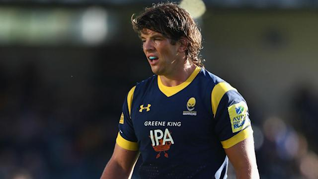 Worcester Warriors have secured the services of former Ireland and British and Irish Lions forward Donncha O'Callaghan for another year.