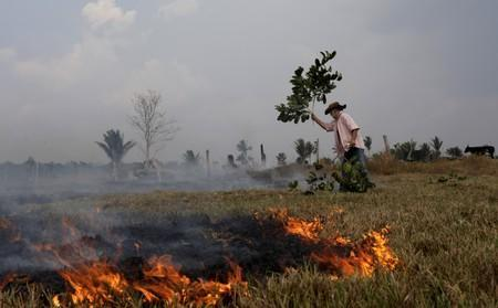 Avaci, 77, who is an employee of a farm, fights a fire on a field after it was hit by a fire burning a tract of the Amazon forest as it is cleared by farmers, in Rio Pardo