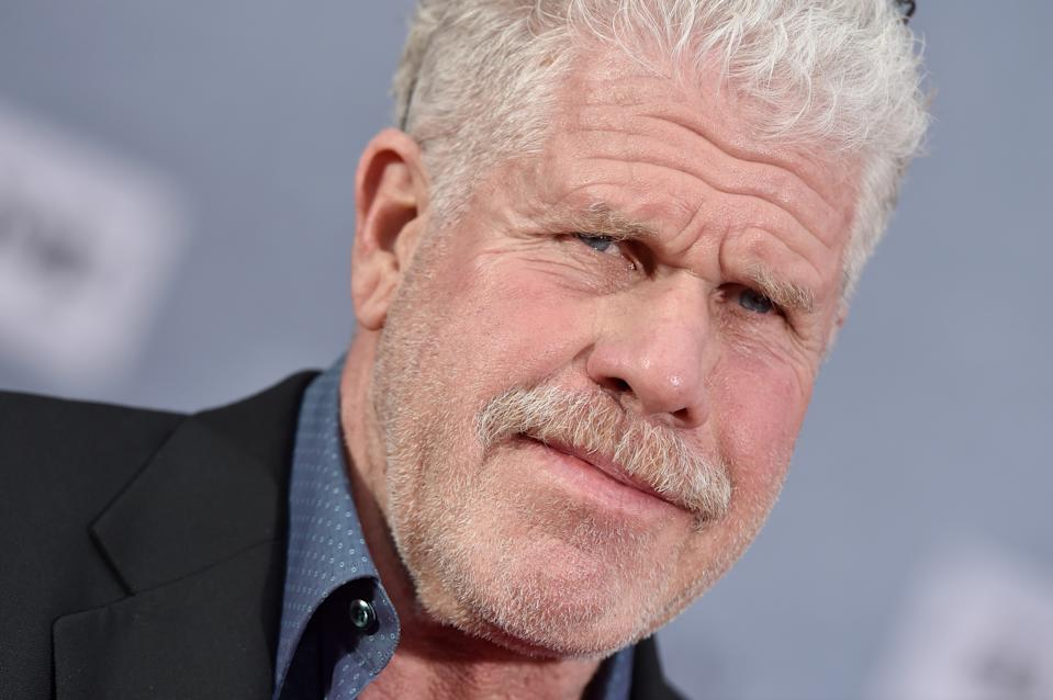 HOLLYWOOD, CALIFORNIA - APRIL 11: Ron Perlman attends the 2019 TCM Classic Film Festival Opening Night Gala and 30th Anniversary Screening of 'When Harry Met Sally' at TCL Chinese Theatre on April 11, 2019 in Hollywood, California. (Photo by Axelle/Bauer-Griffin/FilmMagic)