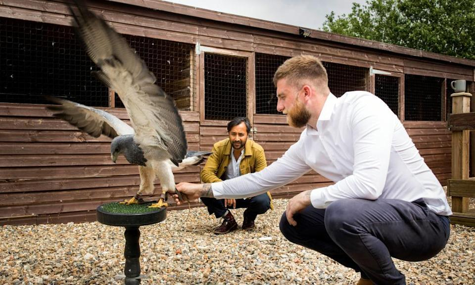 Rhik with Ryan Shoebridge, of the Hawking Centre, and Moet, a nine-year-old Chilean blue eagle.