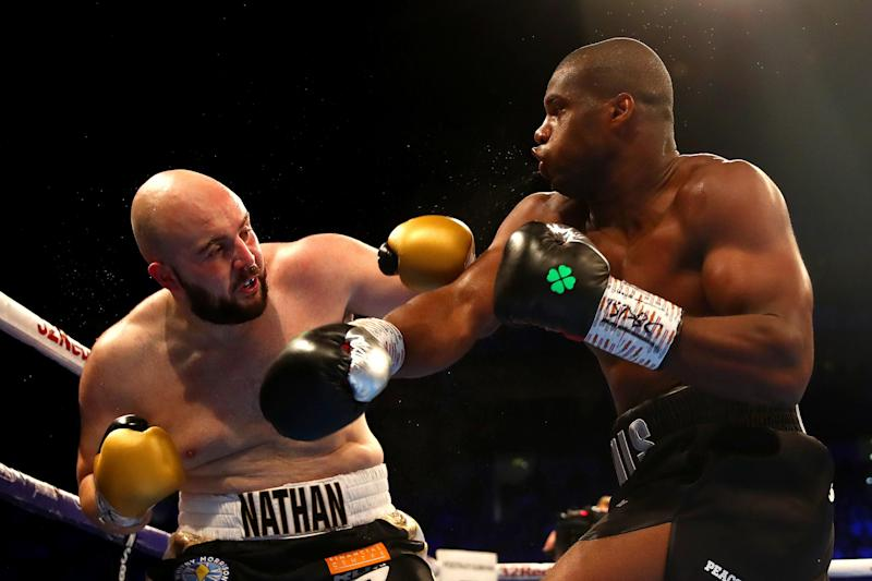 Dubois flattened Nathan Gorman last time out. (Getty Images)