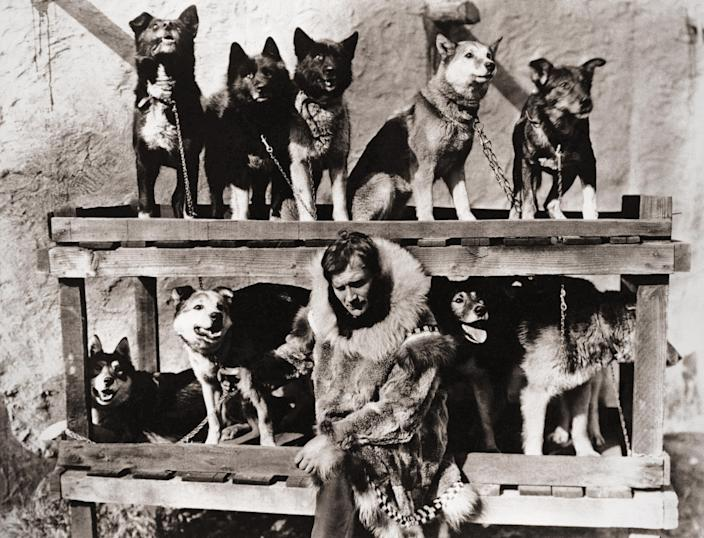 Gunnar Kaasen poses with the dog team which he drove through a blinding blizzard to Nome, Alaska, to deliver a diphtheria serum in 1925. (AP file)
