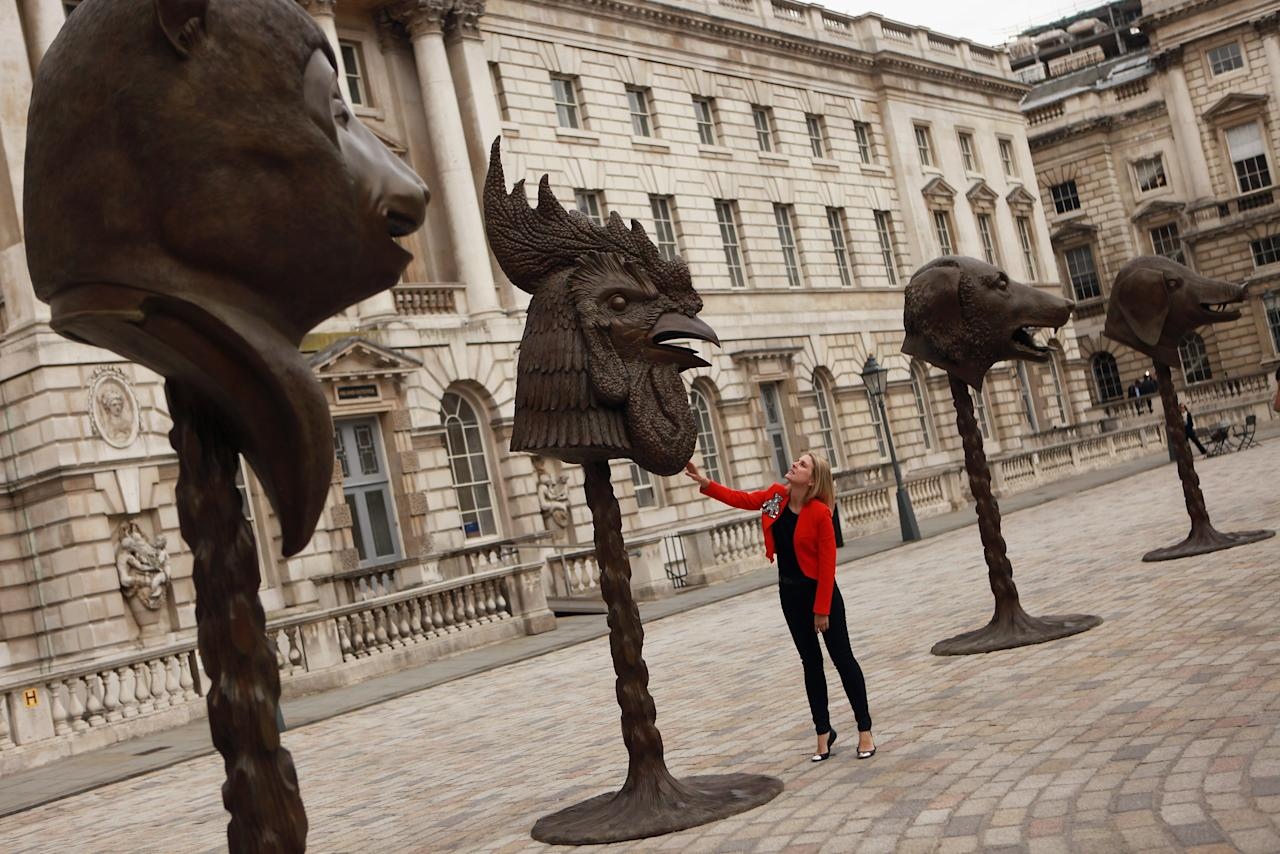"LONDON, ENGLAND - MAY 11:  A woman examines sculptures in the series entitled ""Circle of Animals/Zodiac Heads"" by Chinese artist Ai Weiwei in the courtyard of Somerset House on May 11, 2011 in London, England. The installation comprises of 12 bronze heads of animals which feature in the Chinese zodiac. The artist Ai Weiwei, who is outspoken in his criticism of the Chinese administration, was detained by authorities in Beijing on April 3, 2011 and his whereabouts remain unknown.  (Photo by Oli Scarff/Getty Images)"