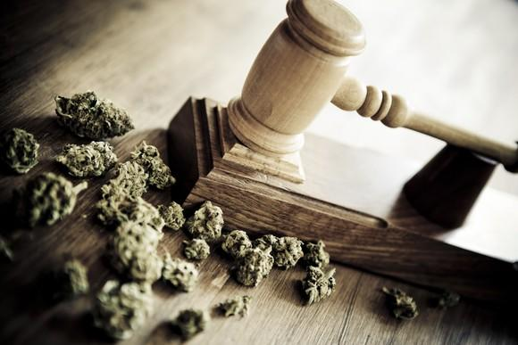 A judge's gavel next to a pile of trimmed cannabis buds.