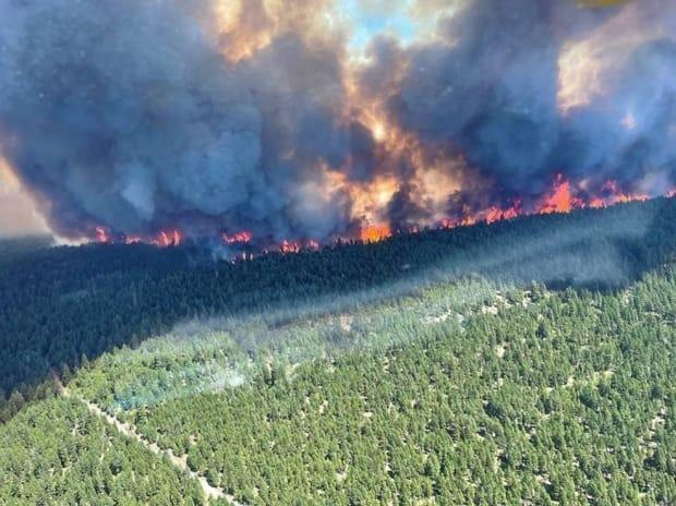The Sparks Lake fire was first reported on June 28, 2021, about an hour northwest of Kamloops, B.C. Residents of nine properties in the area are now being told to evacuate after the Thompson-Nicola Regional District declared a state of local emergency. (Twitter/B.C. Wildfire Service - image credit)