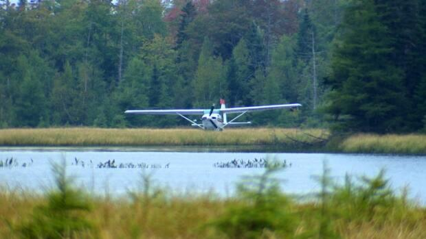 The plane that was forced to land in Turf Lake, N.S., is a Cessna 206. (Brian MacKay/CBC - image credit)