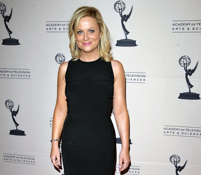 "FILE - In this Aug. 20, 2012 file photo, actress Amy Poehler attends the Academy of Television Arts and Sciences' Performers Peer Group Reception at the Sheraton Universal Hotel, in Los Angeles. Television looks like the land of female opportunity with the success of shows like ""Girls"" and ""New Girl"" and the achievements of actor-writers including Tina Fey and Lena Dunham. but making TV remains largely man's work. (Photo by John Shearer/Invision/AP, File)"