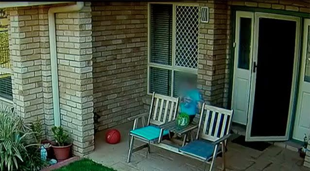 Little Oscar came out to investigate the noise. Source: 7 News