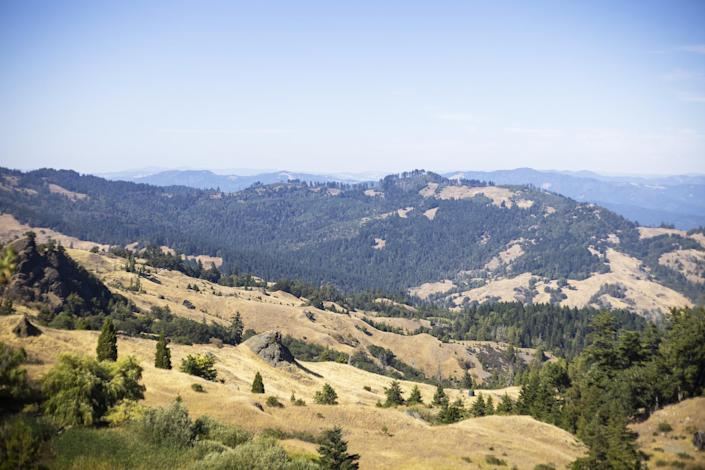 The King Range in Humboldt County, Calif., typically has wet winters and dry weather in summer. The drought year saw the rain stop early. (John Brecher / for NBC News)