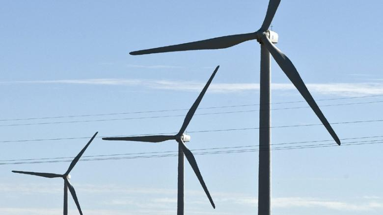 Ottawa companies call renewable energy contract cancellations a waste