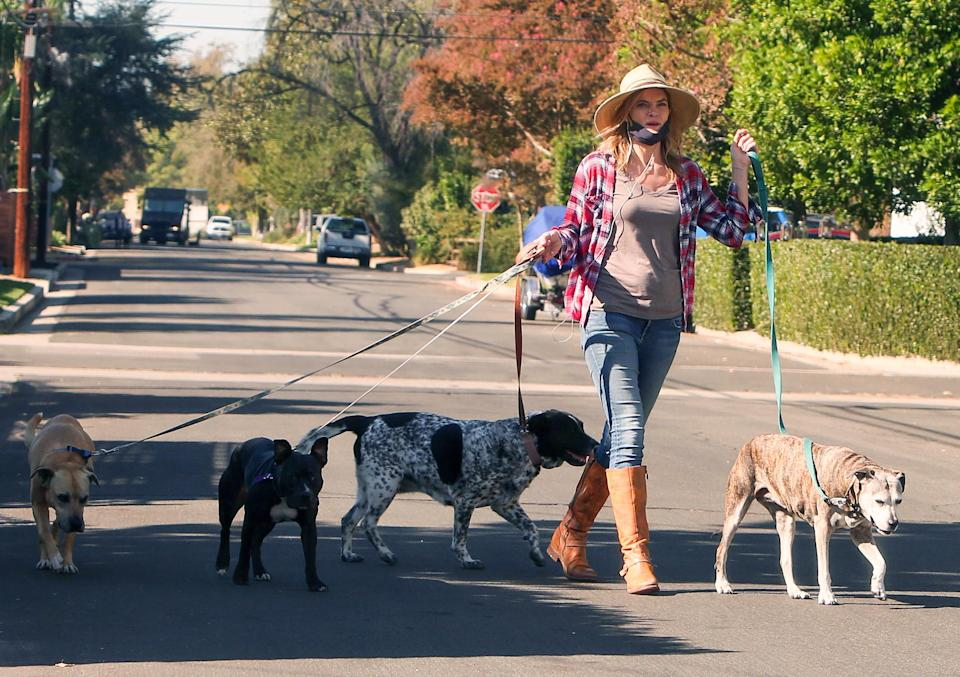 <p>Missi Pyle walks four of her dogs on a sunny Friday in L.A.</p>