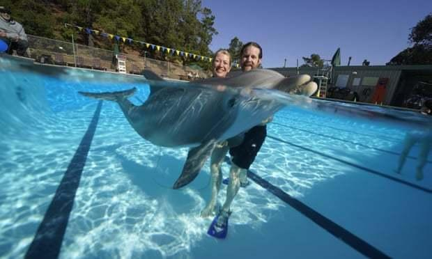 Kids and parents play in the water with Edge Innovations' robotic dolphin prototype.
