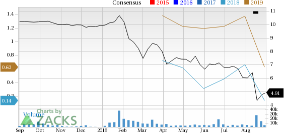 Alta Mesa (AMR) has witnessed a significant price decline in the past four weeks, and is seeing negative earnings estimate revisions as well.