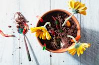 """In this updated version of the childhood favorite, everything—except the gummy worms—is made from scratch. <a href=""""https://www.epicurious.com/recipes/food/views/fancy-dirt-cake?mbid=synd_yahoo_rss"""" rel=""""nofollow noopener"""" target=""""_blank"""" data-ylk=""""slk:See recipe."""" class=""""link rapid-noclick-resp"""">See recipe.</a>"""