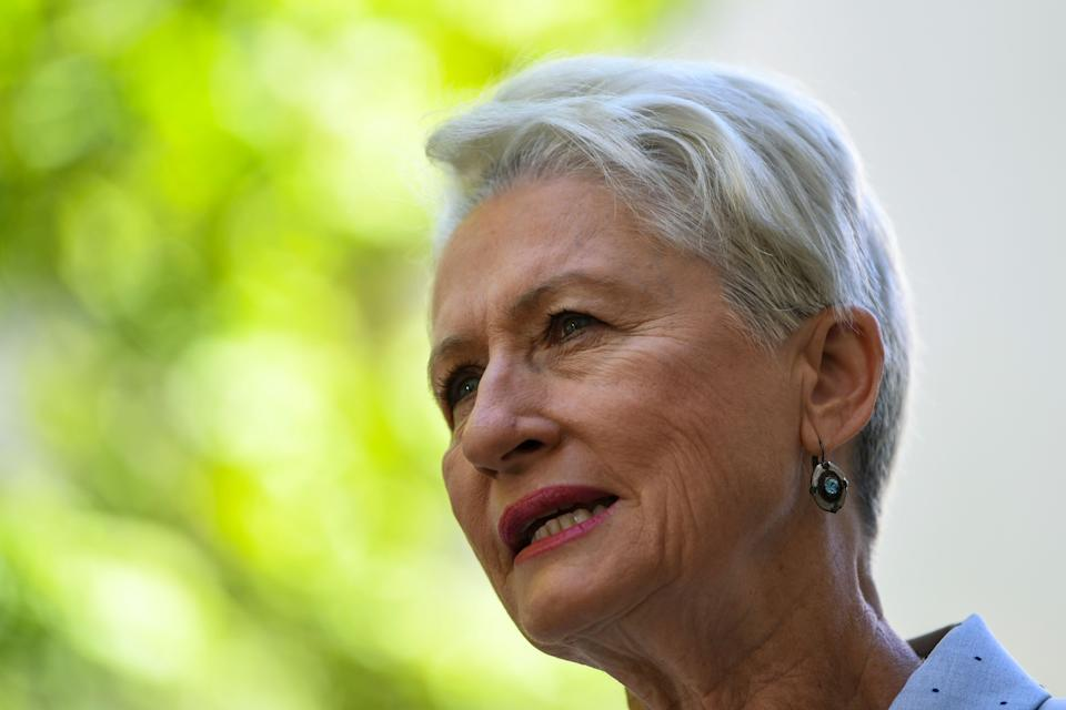 Federal election Wentworth candidate Kerryn Phelps, pictured, won the seat after the retirement of Malcolm Turnbull. (AAP Image/Lukas Coch)