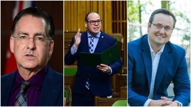 The NDP's Brian Masse, Conservative Chris Lewis and Liberal Irek Kusmierczyk are projected to win their seats. (Sean Kilpatrick/The Canadian Press and Irek Kusmierczyk campaign - image credit)