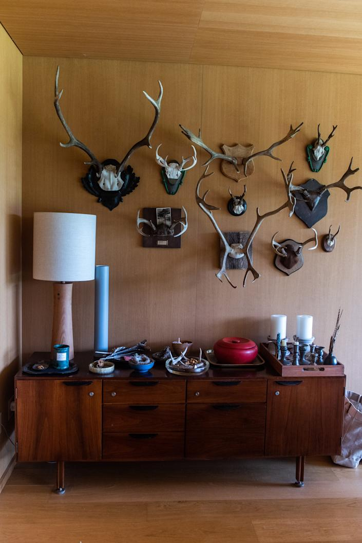 Antlers adorn the wall of magazine editor Matt Hranek's home in Hankins, NY on Friday, August 22nd, 2020.
