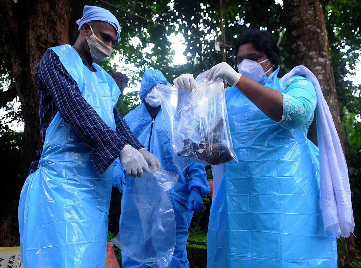 Kozhikode, India - September 07: (BILD ZEITUNG OUT) Officials deposit a bat into a Plastic bag after catching it on September 07, 2021 in Kozhikode, India. The Nipah virus is carried mainly by fruit-eating bats. (Photo by C. K Thanseer/DeFodi images via Getty Images)