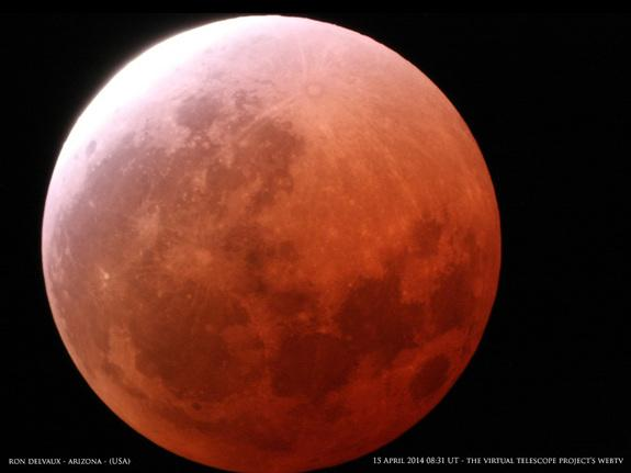 A photo of the first total lunar eclipse of 2014 taken from Arizona.