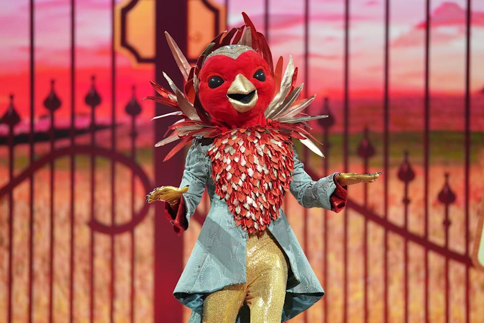 This image and the information contained herein is strictly embargoed until 00.01 Saturday 23rd January 2021  From Bandicoot TV  The Masked Singer: SR2: Ep5 on ITV  Pictured: Robin.  This photograph is (C) Bandicoot TV and can only be reproduced for editorial purposes directly in connection with the programme or event mentioned above, or ITV plc. Once made available by ITV plc Picture Desk, this photograph can be reproduced once only up until the transmission [TX] date and no reproduction fee will be charged. Any subsequent usage may incur a fee. This photograph must not be manipulated [excluding basic cropping] in a manner which alters the visual appearance of the person photographed deemed detrimental or inappropriate by ITV plc Picture Desk.  This photograph must not be syndicated to any other company, publication or website, or permanently archived, without the express written permission of ITV Picture Desk. Full Terms and conditions are available on the website www.itv.com/presscentre/itvpictures/terms  For further information please contact: james.hilder@itv.com / 0207 157 3052