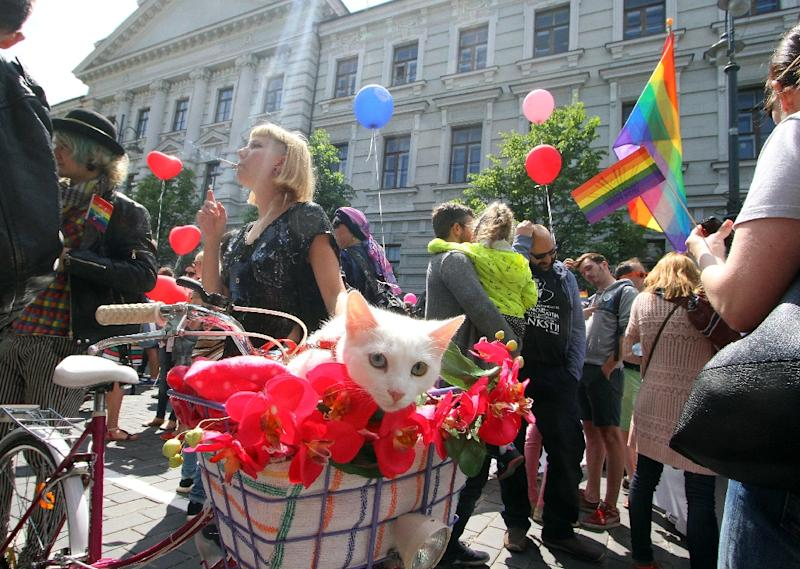 LGBT rights demonstrators gather in 2016, in Vilnius (AFP Photo/Petras Malukas)