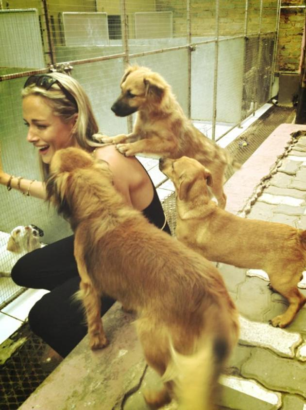 "<p>Reeva and three puppies. Steenkamp's publicist Sarit Tomlinson told Sky News that she was a ""talented bright young girl"" whose star was rising: ""She was the sweetest human being and an absolute angel on Earth"".</p>"