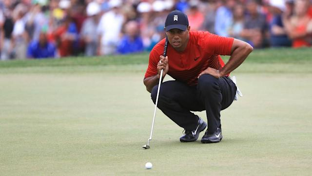 Niall Horan and JJ Watt were among those who lauded Tiger Woods after he produced a moment of magic at the Valspar Championship.