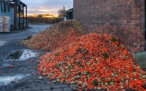 The UK wastes around 10m tonnes of food every year