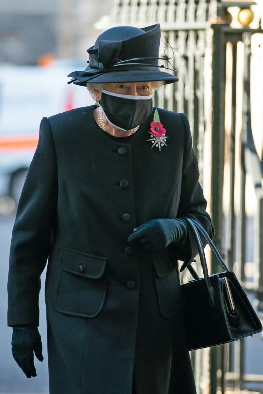 Queen Elizabeth II, who at 94 is among those first in the line for the vaccination, could front a public awareness campaign