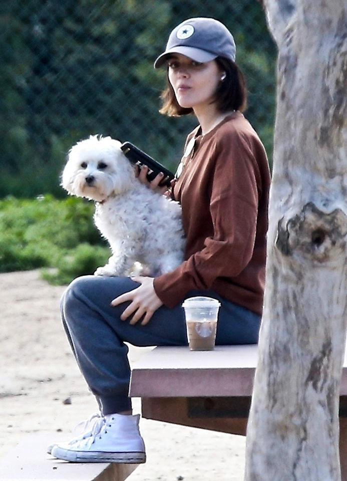 <p>Lucy Hale and her dog take a break on Thursday after grabbing coffee in Los Angeles.</p>