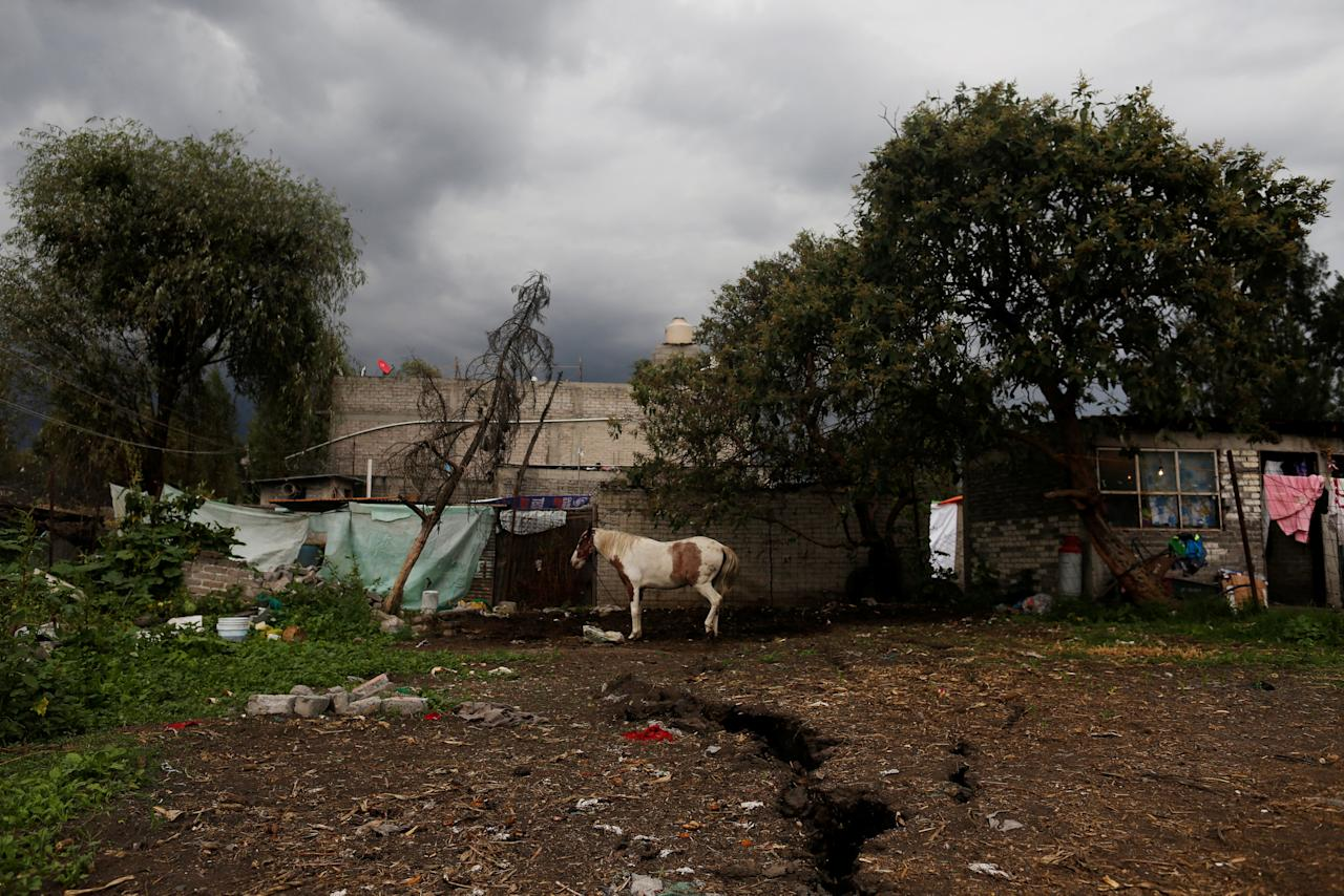 A land crevice is seen on a farmer's land after the earthquake in Xochimilco, on the outskirts of Mexico City, Mexico September 25, 2017. REUTERS/Carlos Jasso